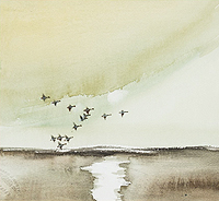 Hugh Brandon-Cox Geese Flight near Wells