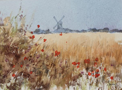 Jeremy Barlow Poppies Towards Cley Mill