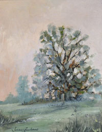 Trees in Summer Barlow