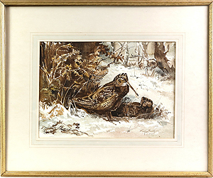 Pair of Woodcock   - Frank Southgate painting for sale