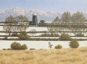 Wilczur Painting - Marsh Harrier - Burnham Overy Mill