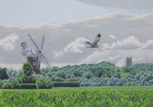Wilczur Painting - Marsh Harrier  Cley Marshes