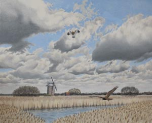 Wilczur Painting - Marsh Harrier - Heigham Holmes